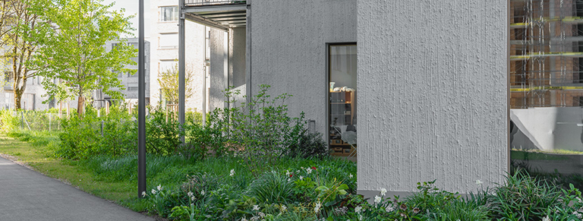 Begrünung Alterswohnungen mit Staudenmischbepflanzung und Blumenwiesen