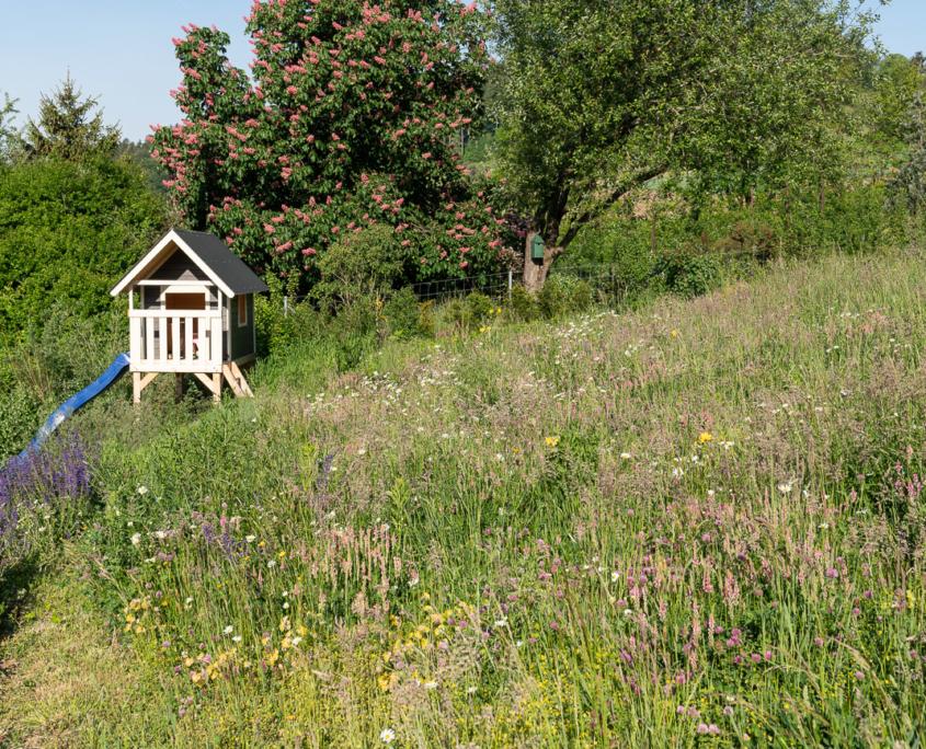Naturnahe Bepflanzung Einfamilienhaus mit Blumenwiese