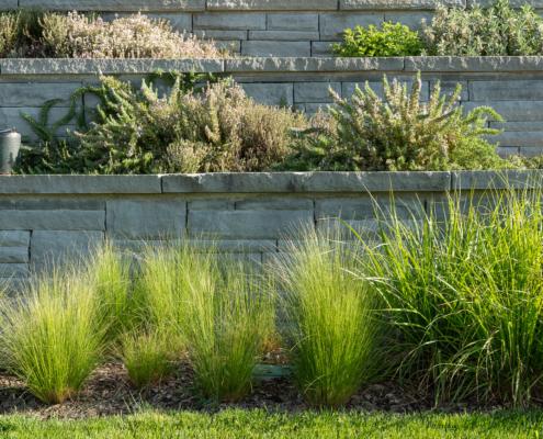 Natursteinmauer mit Kräuter und Gräser