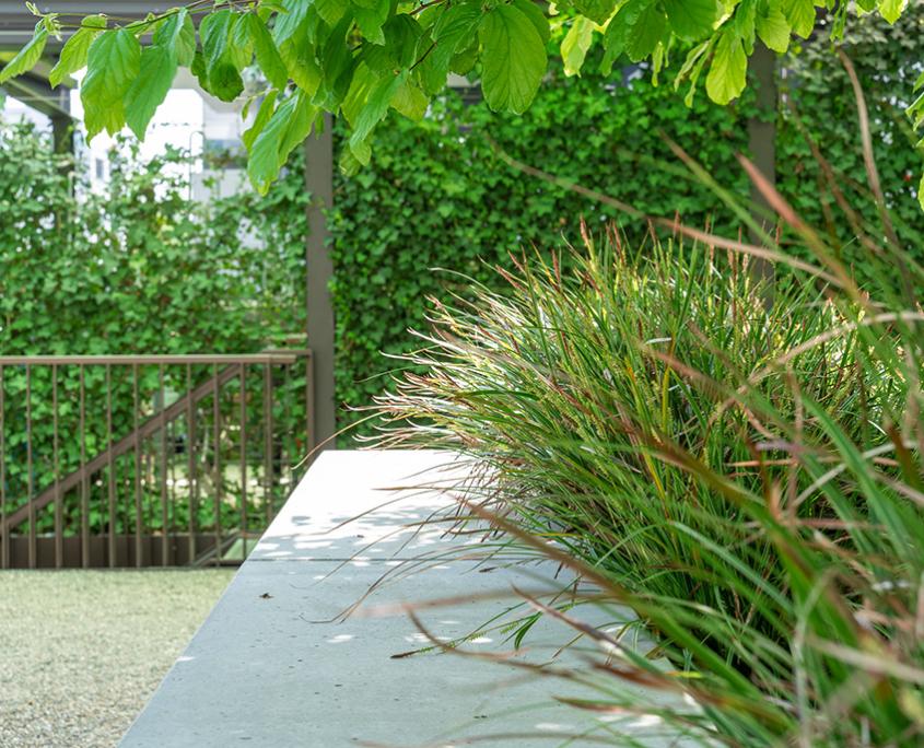 Begrünung Veloraum Mehrfamilienhaus Glattpark