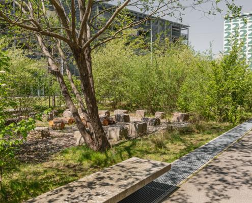Ruderalbepflanzung mit Natursteinblöcken als Sitzmöglichkeit