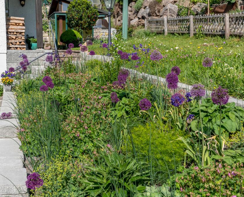 Bepflanzung kleiner Privatgarten