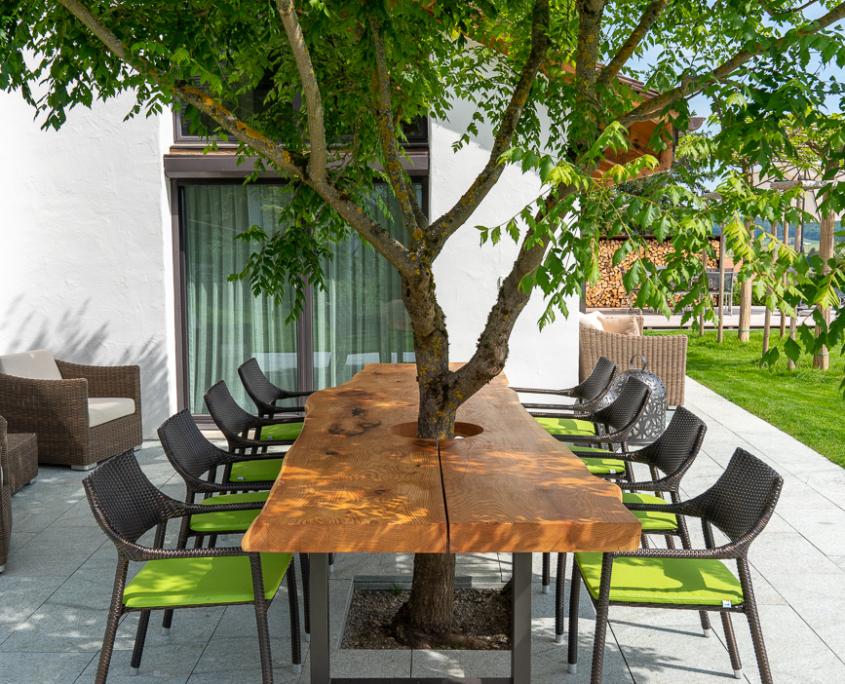 Baum in Tisch als Schattenspender