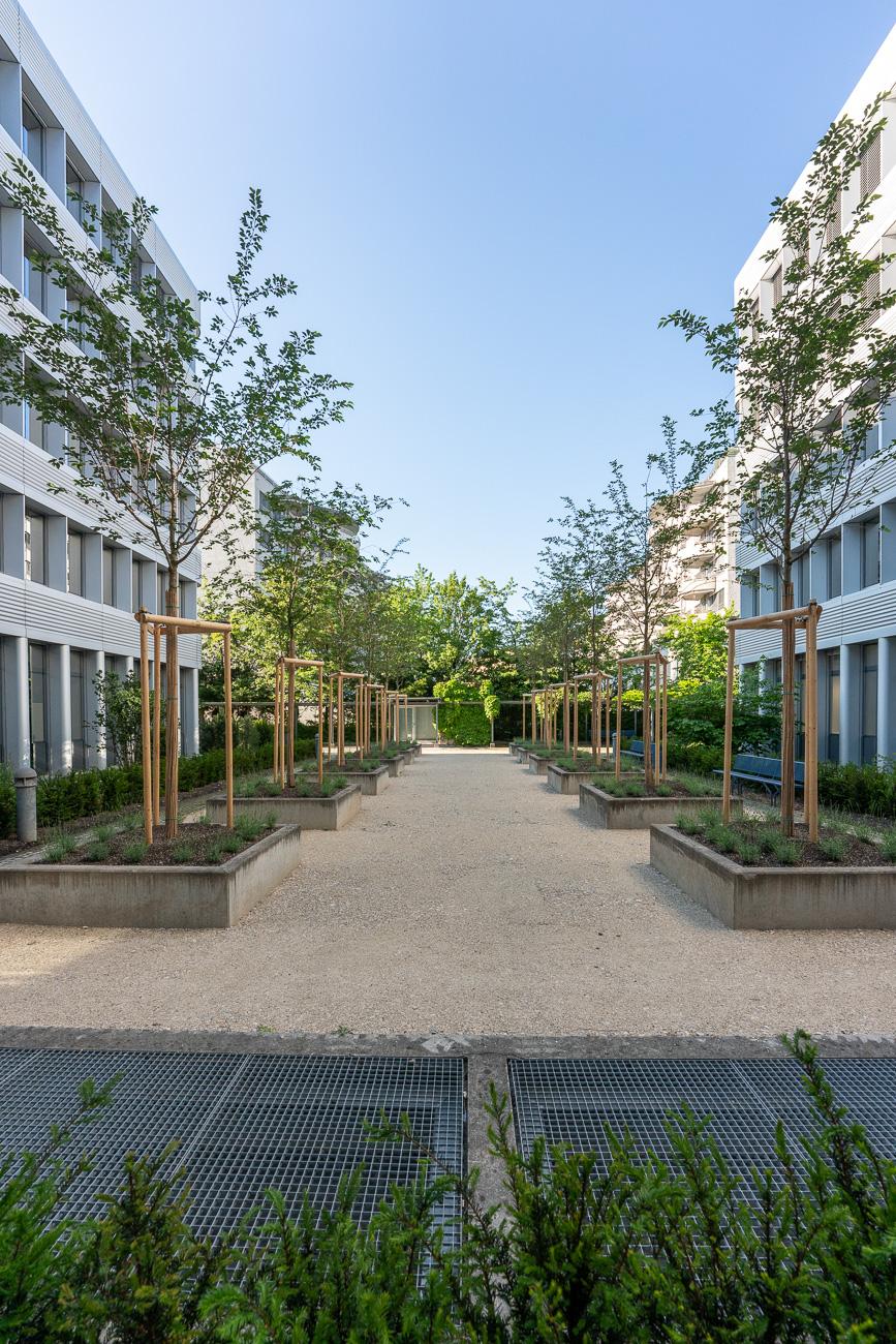 Begrünter Innenhof an der Eggbühlstrasse Zürich