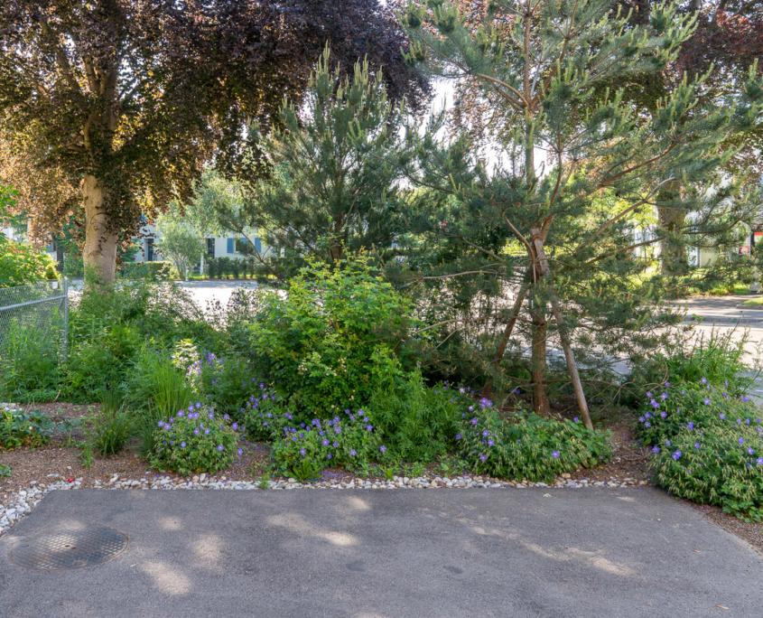 Ueberbauung Huerstwald Zürich Affoltern