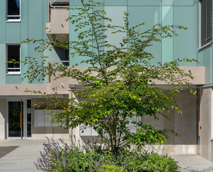 Ueberbauung Obstgarten Gattikon